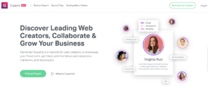 Elementor Experts Review - Another Marketplace For WordPress User